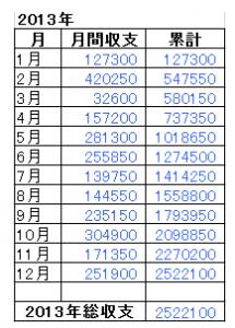 2013年総収支